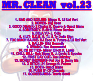 Mr clean 23 web